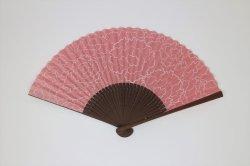 画像1: カーネーション ピンク